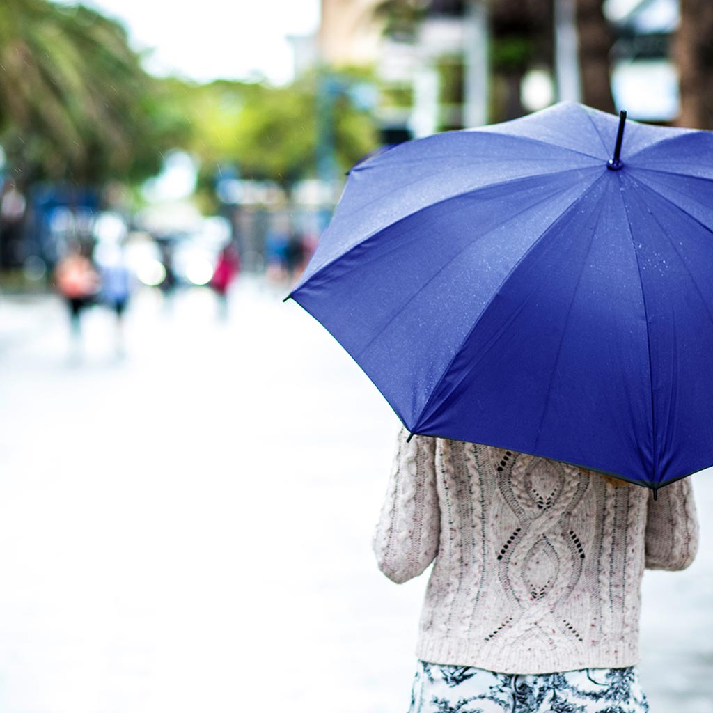 Miami, Weather, Umbrella, Unpredictable