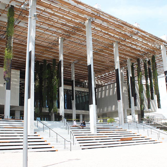 Pérez, Art, Museum, Miami, contemporary